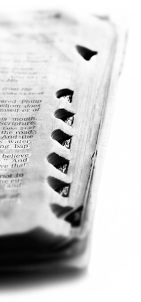 Browse our collection of Bible articles & study guides